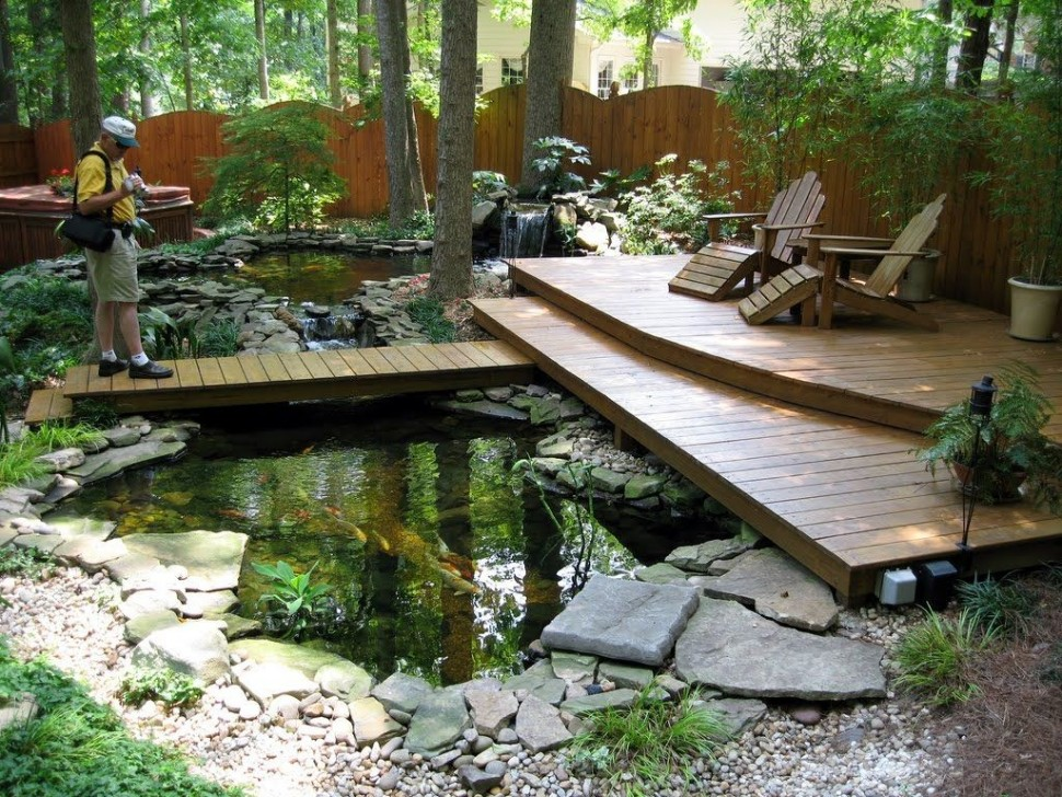 5 amazing small yard garden ideas nlc loans for Pond shade ideas